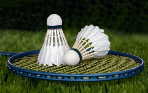 Coming to North: Badminton?